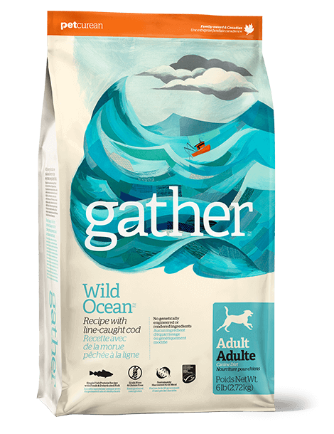 GATHER Wild Ocean for dogs